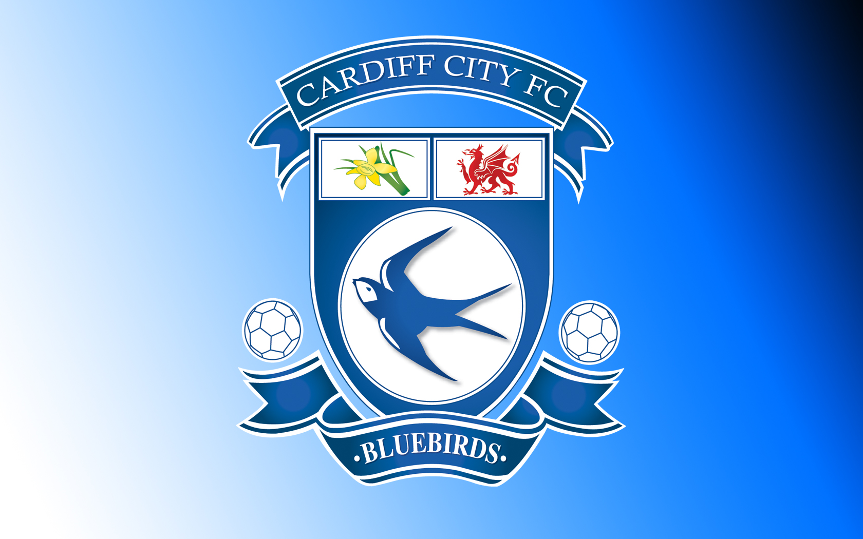 Cardiff City Football Wallpaper, Backgrounds and Picture.