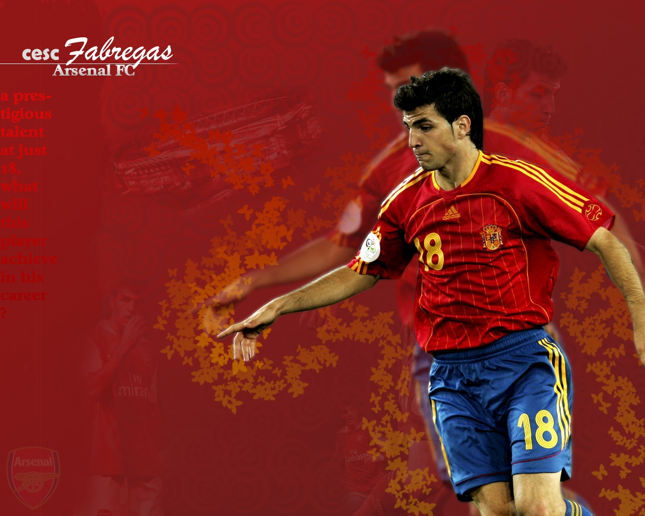 Cesc Fabregas Football Wallpaper