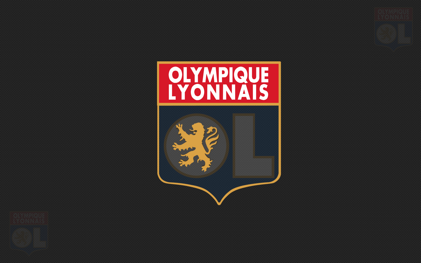 Lyon Football Wallpaper