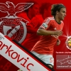 Lazar Markovic Wallpaper